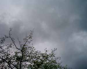 cloud filled sky getting ready to rain
