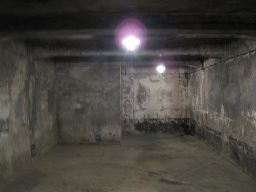 Orgone in Auschwitz - Gas Chamber