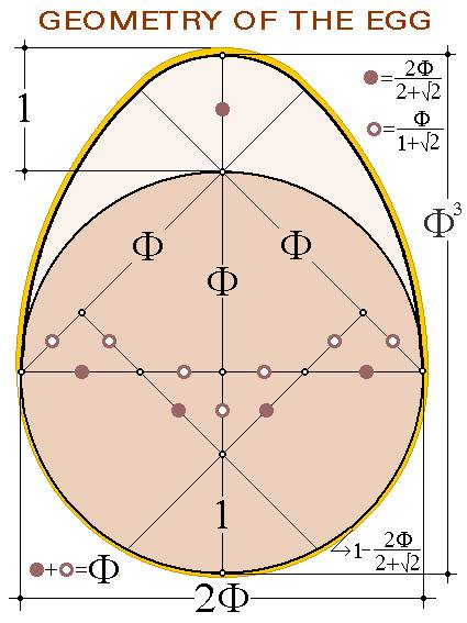 geometry of the egg