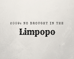 No Drought in Limpopo